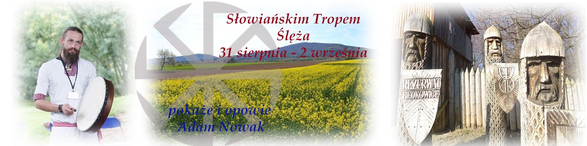 sleza-banner
