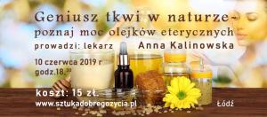 Geniusz tkwi w naturze - poznaj moc olejków eterycznych @ Łódź, Sienkiewicza 61